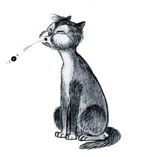 Кот выплевывает таблетку