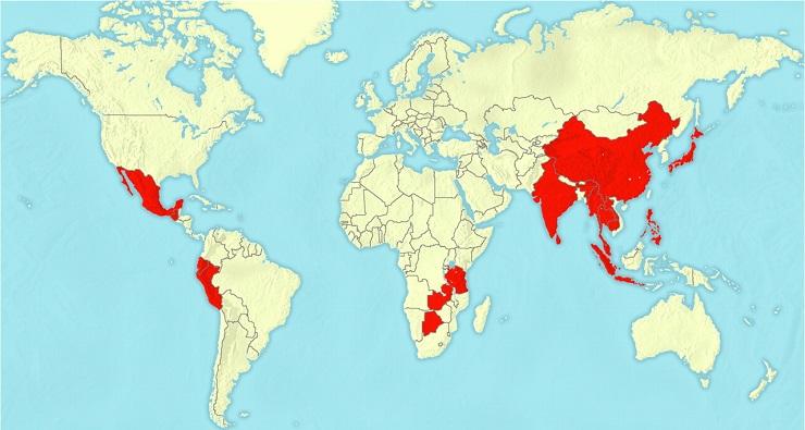 Распространение гнастостомоза, показанное на карте