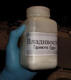 Яйца глиста в таблетках для похудения