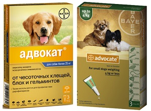 Препарат Advocate для собак